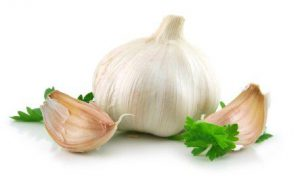 garlic - Ayurhealing