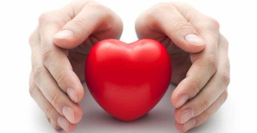 ayurveda cholesterol management